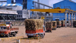 टॉप १६ साखर कारखाने व त्यांची थकीत रक्कम (आकडे कोटीमध्ये)